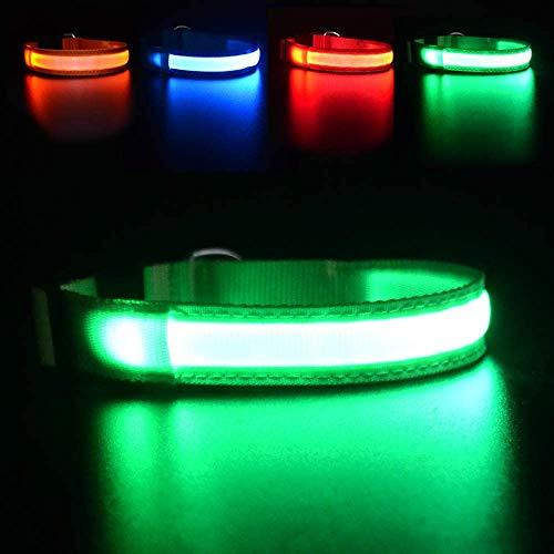 MASBRILL Hundehalsband Leuchtend USB Aufladbar Wasserdichtes LED Leuchthalsband für Kleine Mittlere...