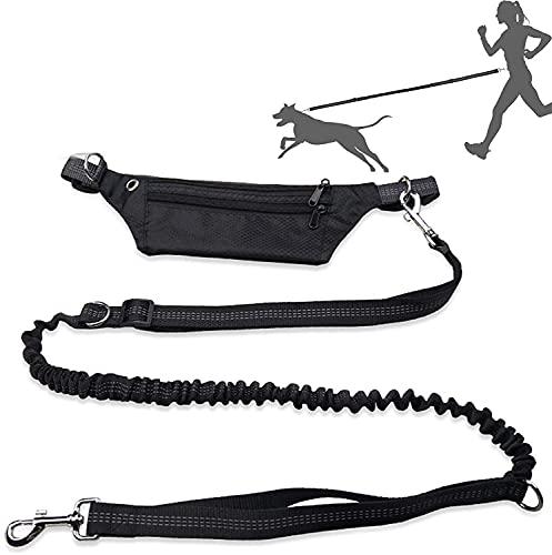 NIUBICLAS Hundeleine zum Laufen, Spazierengehen, Training, Wandern, einziehbares Bungee-Hundeleine für...