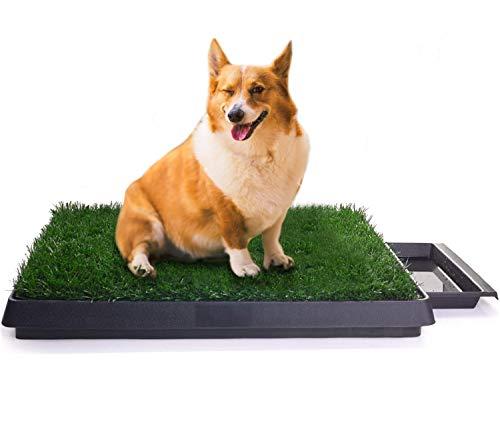 Sailnovo Hundeklo Hunde Toilette Kunstrasen Gras Welpentoilette Trainingsunterlage für Kleine Hunde...