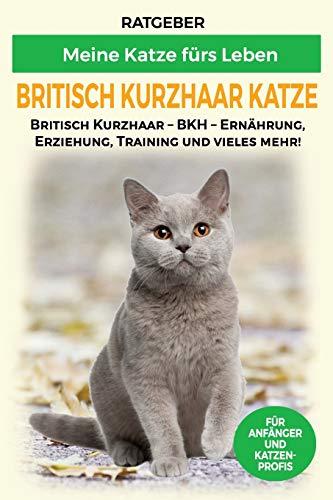 Britisch Kurzhaar Katze: Britisch Kurzhaar Katze Ratgeber - BKH Katze - Erziehung, Ernährung und Pflege...