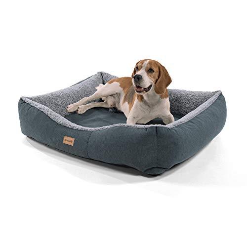 Brunolie Emma Hundekorb, waschbar, hygienisch und rutschfest, luftiges Hundebett mit Kissen zum Kuscheln,...