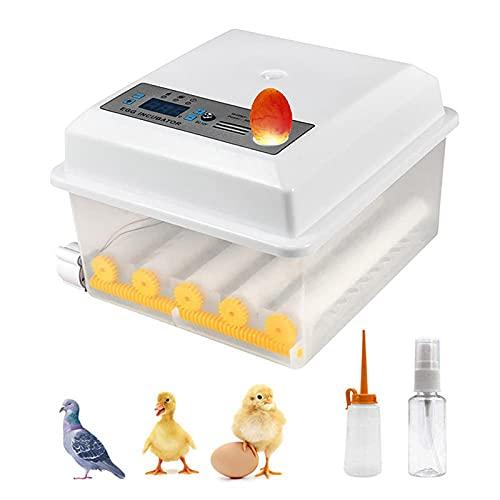 KKTECT Inkubator, Vollautomatische Brutmaschine mit Wender und LED Temperaturanzeige, Brutapparat für...