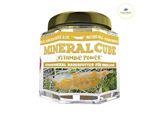 NatureHolic - MineralCube 'Vitamine Power' - 47ml - Mineralversorgung + Ferienfutter