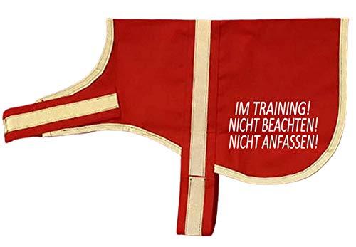 reflektierende Weste Leuchtweste Kenndecke Kennweste mit Reflektor für Hunde Im Training nicht beachten...