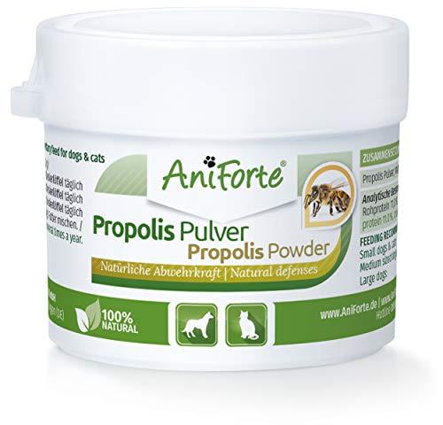 AniForte Propolis Pulver für Hunde & Katzen 20g - Natürliche Unterstützung Immunsystem & Vitale Haut...