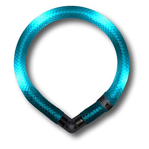 LEUCHTIE® Leuchthalsband Mini türkis Größe 32,5 I LED Halsband extra für kleine Hunde I wasserdicht...