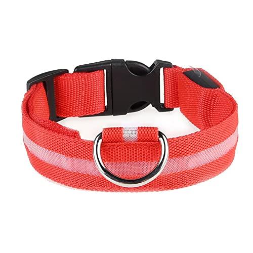 Color Yun Heimtierbedarf Leuchthalsband für Hunde Wiederaufladbares Led-Halsband Teddy-Hundehalsband...