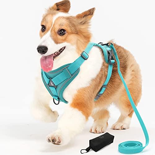 CALHNNA Hundegeschirre für kleine, mittelgroße Hunde, kein Ziehen, Welpengeschirr mit verstellbarem...
