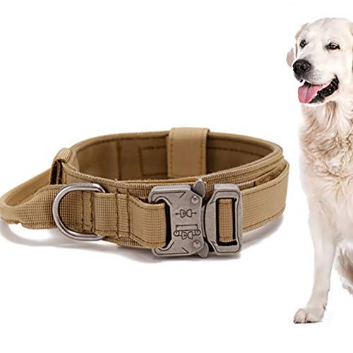 LeeBoom Outdoor Hundehalsband Durable Double Layer Nylonmaterial-Hundehalsbänder Einstellbare Hunde...