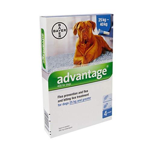 Advantage 400 Lösung Pipetten für Hunde ab 25 kg