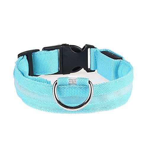 Ashley GAO Haustierbedarf Leuchthalsband für Hunde Wiederaufladbares Led-Halsband Teddy Golden Retriever...