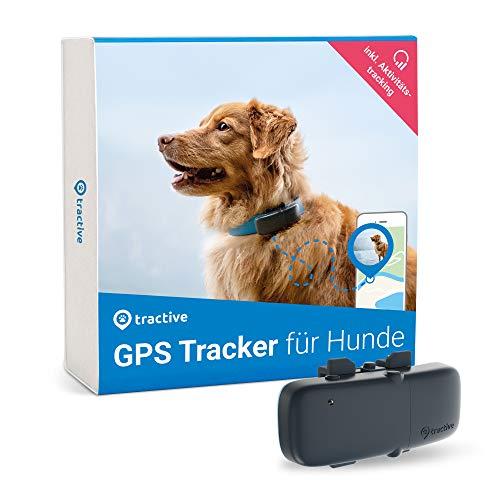 Tractive GPS Tracker für Hunde, unlimitierte Reichweite , Aktivitätstracking, wasserdicht, Hundeortung,...