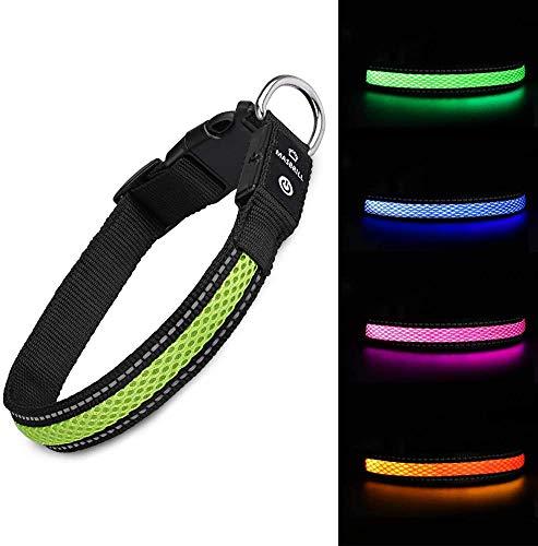 MASBRILL Leuchthalsband für Hunde aufladbar LED hundehalsband Blinkende Lichter mit USB verstellbar 3...