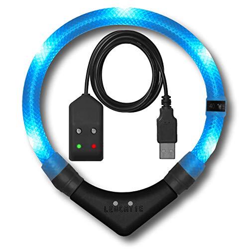 LEUCHTIE® Leuchthalsband Premium Easy Charge eisblau Größe 50 I LED Halsband für Hunde I USB...