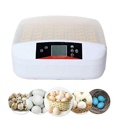 Brutmaschine Vollautomatisch Inkubator Brutautomat Hühner Brutapparat für bis zu 55 Hühnereier mit...