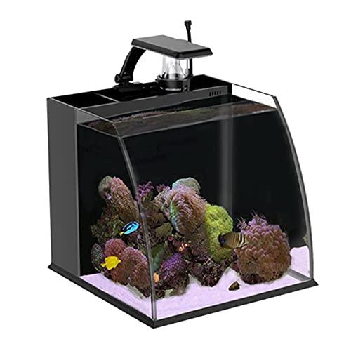 DUTUI Aquarisches Landschafts-Aquarium des Desktops, Kleines Balkonaquarium des Wohnzimmers, Stilles...