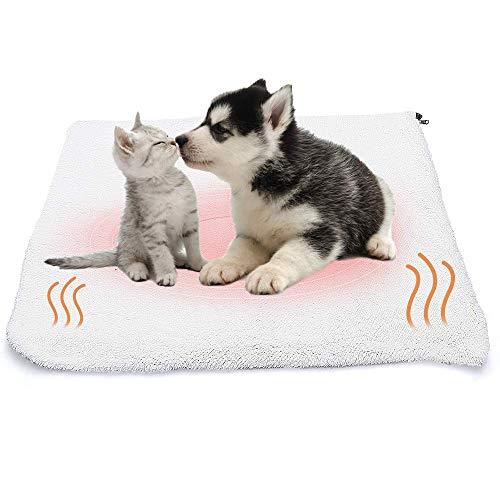 ASANMU Selbstheizende Decke für Katzen & Hunde, Wärmematte für Haustiere Wärmedecke Katze/Hunde...
