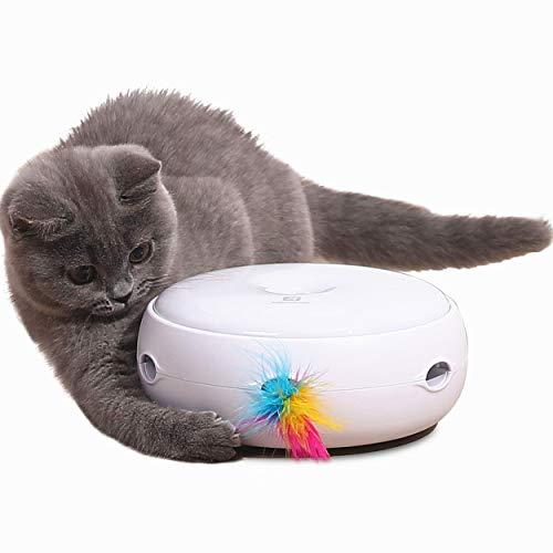 Lampop Katzenspielzeug Elektrisch Spielzeug mit Feder interaktives Spielzeug für Katzen, Automatisch...