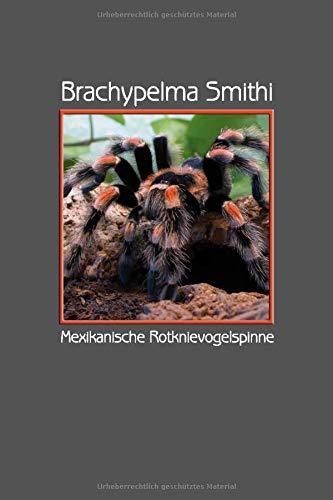 Brachypelma Smithi Mexikanische Rotknievogelspinne: Format A5, 120 Seiten, fein hellgrau liniert....