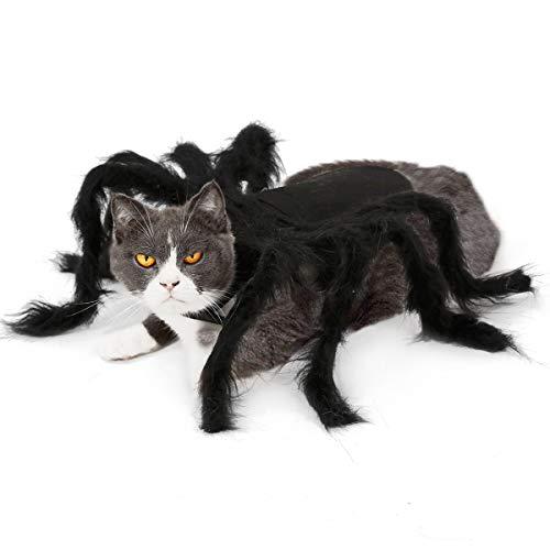 BT Bear - Halloween-Kostüm für Hunde und Katzen, Spinnen-Design