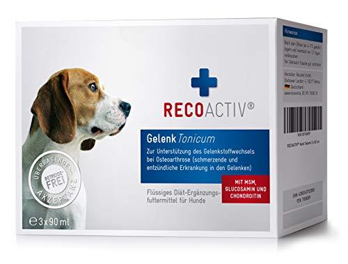 RECOACTIV® Gelenk Tonicum für Hunde - Kurpackung 3x90 ml – getreidefrei – mit Grünlippmuschel,...