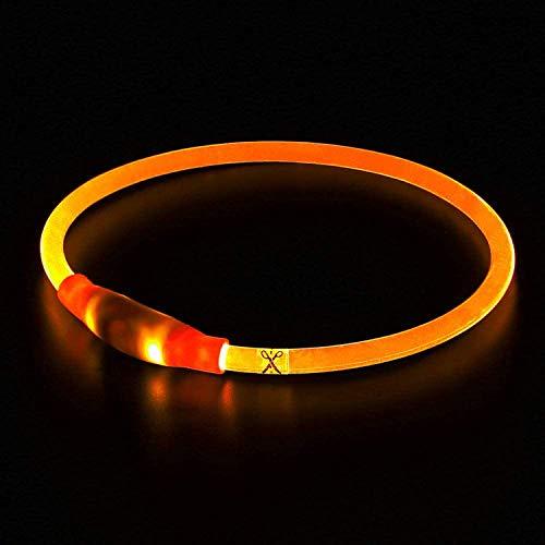 LED Leuchthalsband für Hunde USB Aufladbar hundehalsband Leuchtend Wiederaufladbares und...