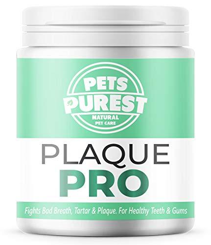 Pets Purest 100% Natürliche Zahnsteinpulver für Hunde & Katzen (180g) Plaque PRO Zahnpflege,...