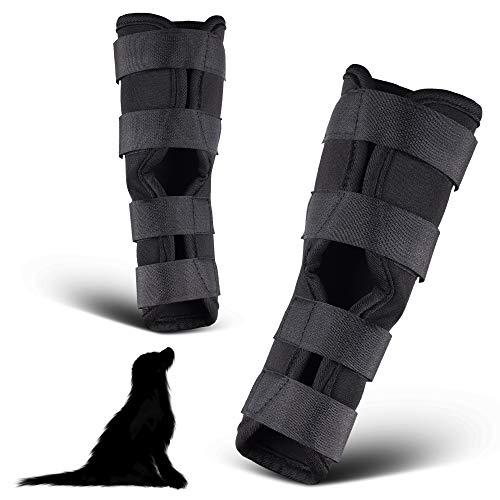 PamperPets Bandage für Hunde, für Vorder- und Hinterbeine, 2 Stück, Größe XL