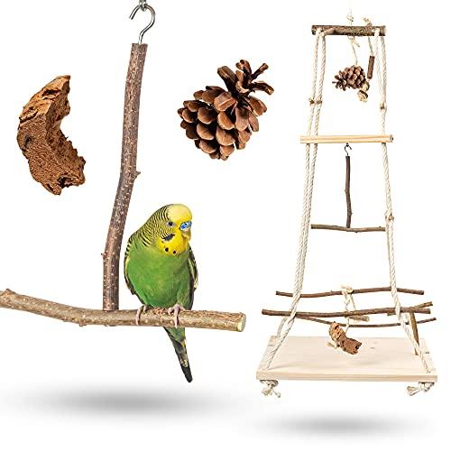 Atemberaubender Vogelspielplatz hängend mit vielen Sitzstangen ! Tolles Vogelspielzeug für...
