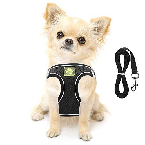 FEimaX Hundegeschirr mit Leine für Kleine Mittele Hunde Katzen Weich Mesh Welpengeschirr Atmungsaktive...