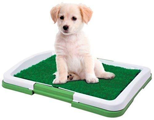 Dominiti Hundetoilette in grün Hundeklo Reisetoilette mit Pad für Hunde Kunstrasen Welpentoilette...