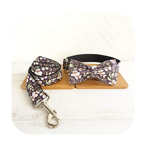 Hundehalsband mit Leine, türkisfarbenes Halsband mit Schnellspanner, verstellbare Leine für...