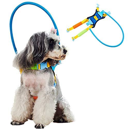 PJDDP Anti Kollisions Ring Für Blinde Hunde, Haustier Safe Halo Harness,Halo-Hundegeschirr...