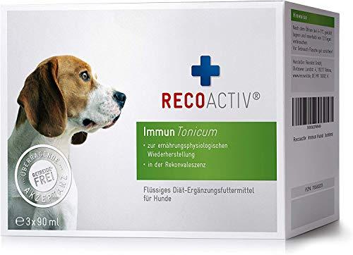 RECOACTIV® Immun Tonicum für Hunde, 3 x 90 ml, zur Vorbeugung und Stärkung des Immunsystems vom Hund,...