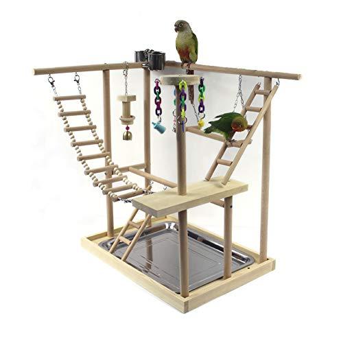 PETAMANIM Vogel-Kletterbaum mit Naturholz-Sitzstangen, Vogel-Spielzeug, Vogelschaukel, Vogelspielplatz,...
