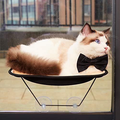 D.Jane Katzen-Hängematte für kleine Katzen, mit Saugnäpfen für bis zu 28 kg