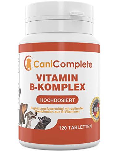 CaniComplete Vitamin B-Komplex für Hunde, Katzen: B1, B2, B3, B5, B6, B9, B12, K3, Calcium, Folsäure....