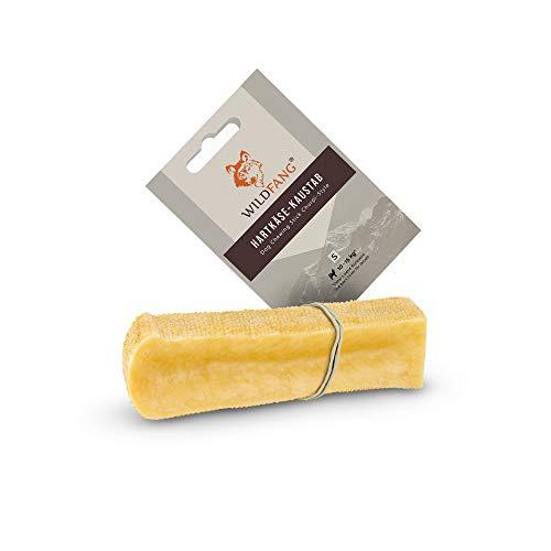 Wildfang® | Kaustab aus Hartkäse für Hunde I Zahnpflege & Kaumuskel Training I Natürliches...