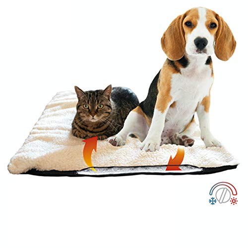 riijk Hundedecke & Katzendecke für kalte Böden | Optimal für ältere Tiere | Waschbare Hunde...