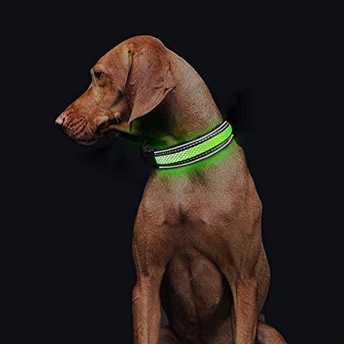 LED Leuchthalsband für Hunde Aufladbar Hundehalsband Leuchtend mit einstellbare Länge für Wasserdicht...