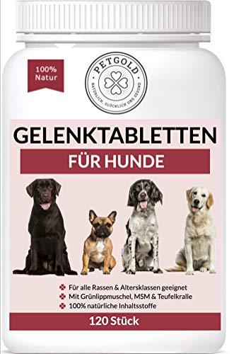 Petgold 120 Gelenktabletten Hund – Hoch konzentrierte Hunde Tabletten für Gelenke –...