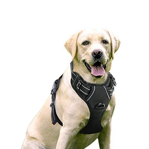 rabbitgoo No-Pull Hundegeschirr atmungsaktiv Brustgeschirr Geschirr für Hunde Welpengeschirr...