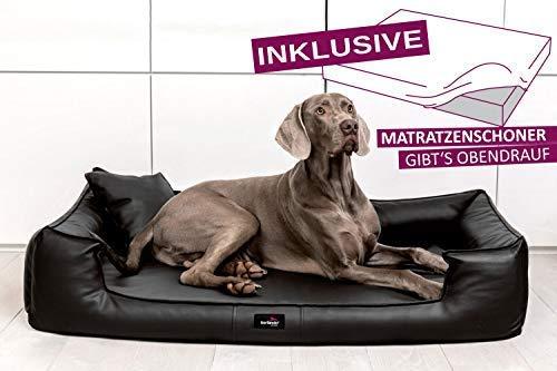 tierlando® Orthopädisches Hundebett Goofy VISCO | ~ inkl. Matratzenschoner ~ | Anti-Haar Kunstleder...