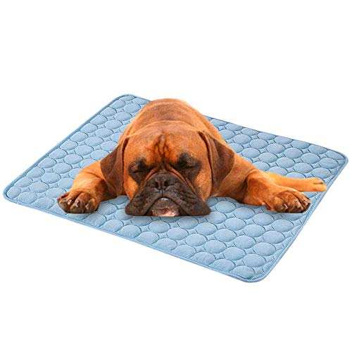 Hundekühlmatte, Haustiermatte, selbstkühlendes Kissen für Hunde und Katzen Leitet die Wärme von Ihrem...