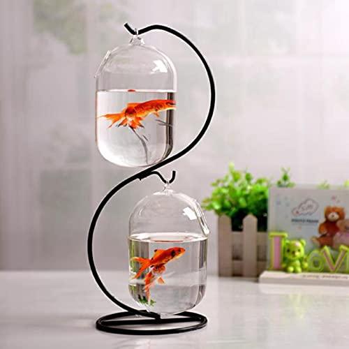 Transparentes Glas Hängendes Aquarium, Desktop 2 Transparentes Glas und 1 S Halterung Ständer Aquarium,...