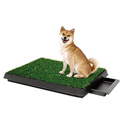 OMVOVSO Hundetoilette Welpentoilette, WC Trainingsunterlage Indoor Hundetöpfchen Rasenmatte Für Kleine...