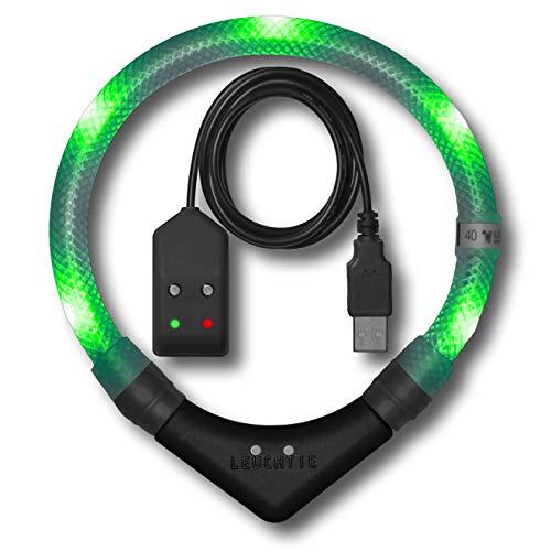 LEUCHTIE® Leuchthalsband Pro Easy Charge grün Größe 45 I LED Halsband für Hunde I USB aufladbar I...