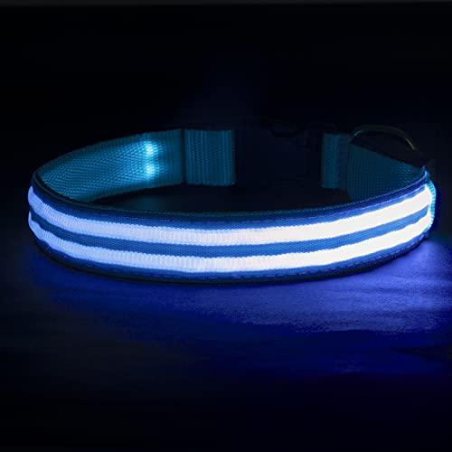 LED Leuchthalsband für Hunde, Aufladbar Hundehalsband Leuchtend mit USB 100% Wasserdicht 3 Blinkende...