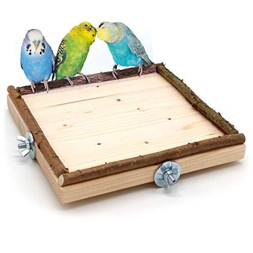 Vogelgaleria Eck Sitzbrett 20x20cm mit Natur Holz Bordüre für Vögel wie Nymphensittich Wellensittich...