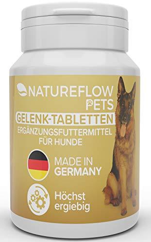 Gelenktabletten für Hunde - mit Grünlippmuschel, MSM und Teufelskralle - Hohe Akzeptanz beim Hund da...